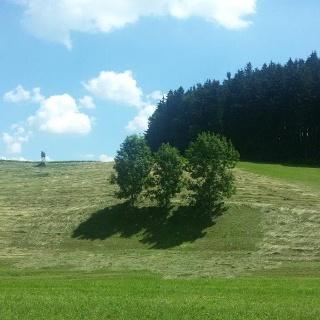 Weg nach Hinterholzhausen