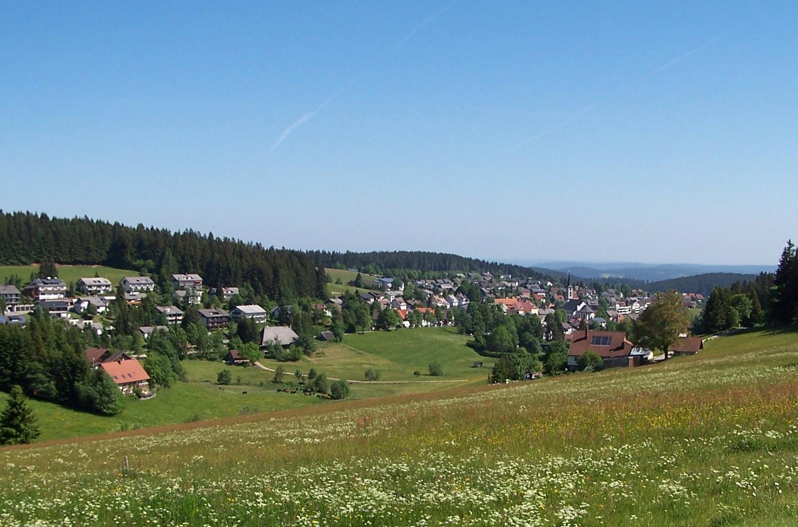Schönwald im Schwarzwald