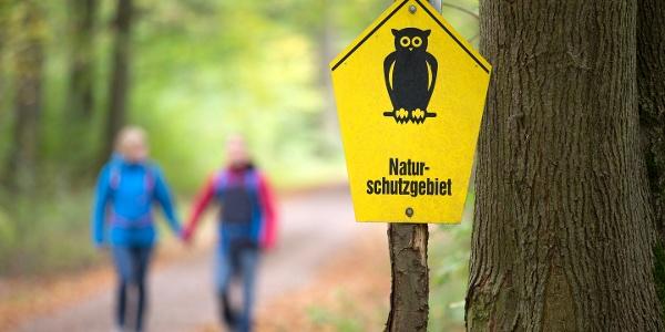 Wandern in der Dahlener Heide © T. Bichler / www.best-of-wandern.de