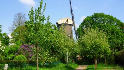 Windmühle in Sonsbeck