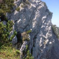 Felsen am Zwiesel