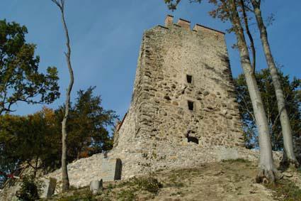 Rundwanderweg von Mammern am Bodensee zur Ruine Neuburg