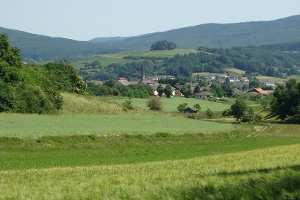 Blick auf Gemünden (Wohra) (Foto: Armin Feulner, Quelle: Marburg Stadt und Land Tourismus)