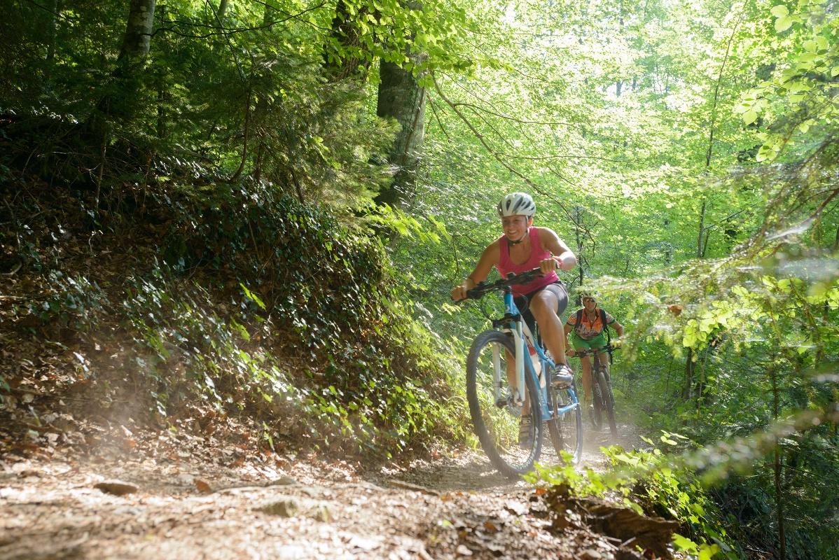 Donau Bodensee Radweg Etappe 3 Von Bad Waldsee Nach Wangen