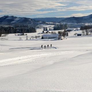 Langlauf im Voralpenland bei Isny Maierhöfen