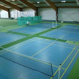 Sportpark Schollbach, Badminton-Plätze