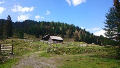 Wieseralm Start Mirnockriesen-Trail