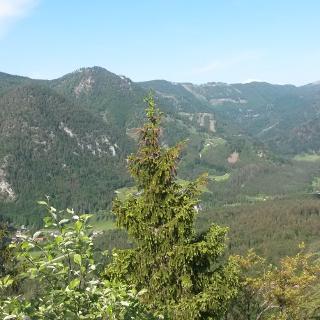 Blick vom Gipfel Richtung Schindlbach