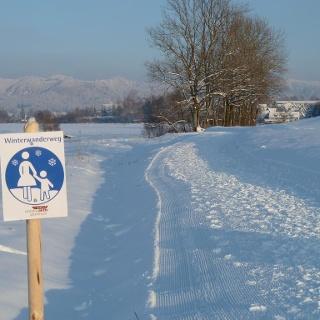 Gewalzter Winterwanderweg in den Bodenmösern (Rotmoos)
