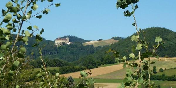 Blick aufs Schloss Krumbach