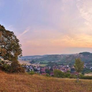 Blick vom Naturdenkmal Linde (