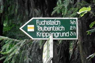 Foto (c) Tourismusverband Sächsische Schweiz e.V. / (c) Sylvio Dittrich
