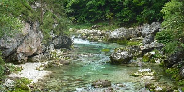 Die vielen Flussgestalten verzaubern