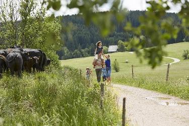 St. Georgen - Rundweg über Königsfeld und Stockwald