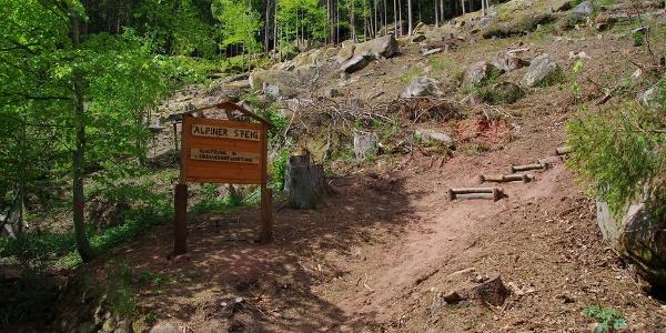 """Einstieg Klettersteig """"Alpiner Steig"""""""