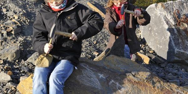 Abenteuer Fossiliensuche: besonders für Kinder sind die Fundstücke aus 300 Mio. Jahren Erdgeschichte etwas ganz besonderes.