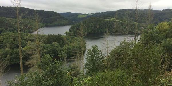 Blick auf den Obersee (Weg oberhalb der Uferstraße)