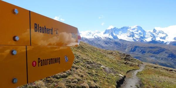 Arrival on top of the Ritzengrat