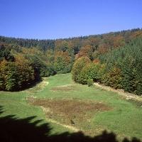 Liesetal bei Hallenberg