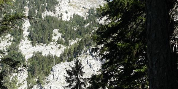 Blick zum Schneeberg aus dem Wasserofengraben