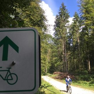 Radweg durch den Wald ins Lautertal