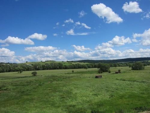 Blick vom Struht-Turm auf die Nuhnewiesen