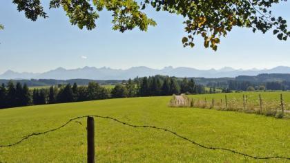 Panoramablick in die Alpen von der Buchel aus