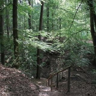 Auf der Hexentreppe