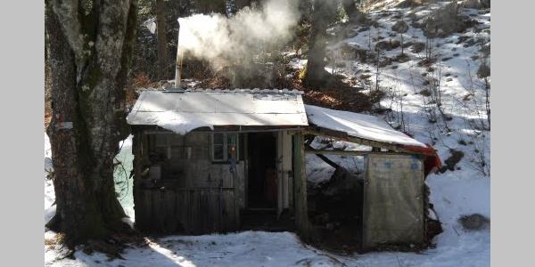 Plasa Shelter