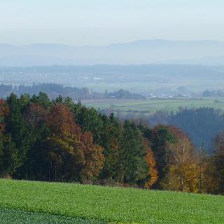 Panoramaaussicht auf der Dürrenmettstetter Hochfläche