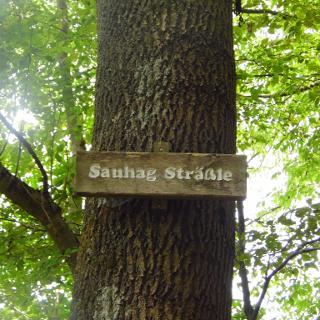 Hohenzollern-Radweg d.d.Sauhag