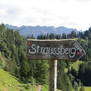 Der Weg zur Straußbergalpe