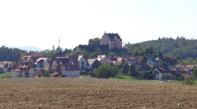 Blick auf Schloss Freudental vom Waldrand aus