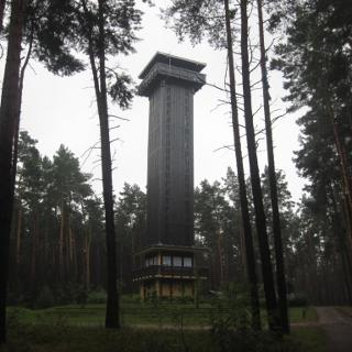 Heidebergturm (Aug. 2015)