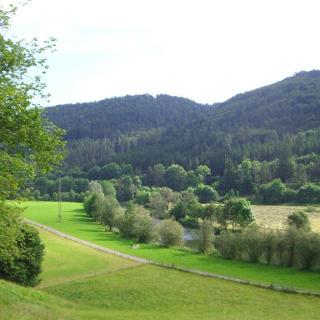 Der Wanderweg entlang des Neckars