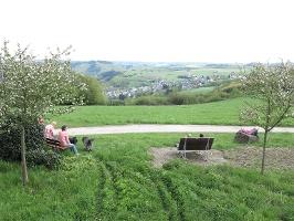 Sinnesbänke mit Weitblick (Foto: Rico Kunz, Quelle: Zeller Land Tourismus GmbH )