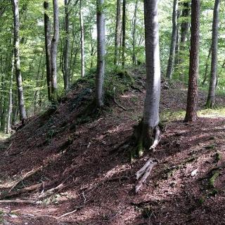 Standort der ehem. Burg Altrietheim