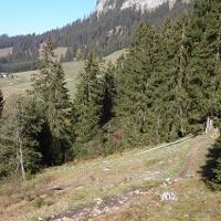 Blick auf die Strausberghütte