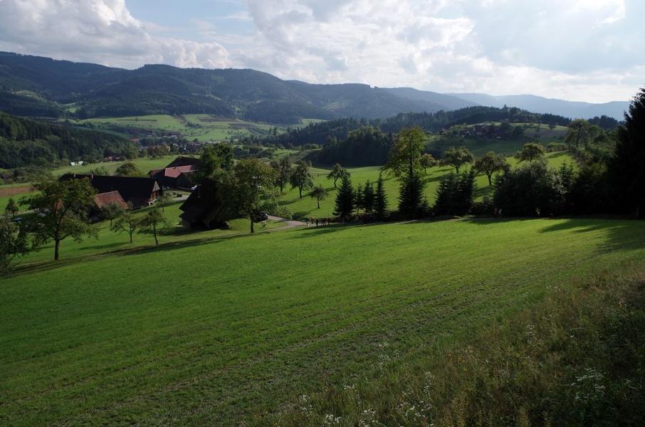 Genießerpfad - Hahn-und-Henne-Runde in Zell am Harmersbach (Premiumweg)