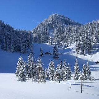 Skitour Laber - an der Soila-Alm