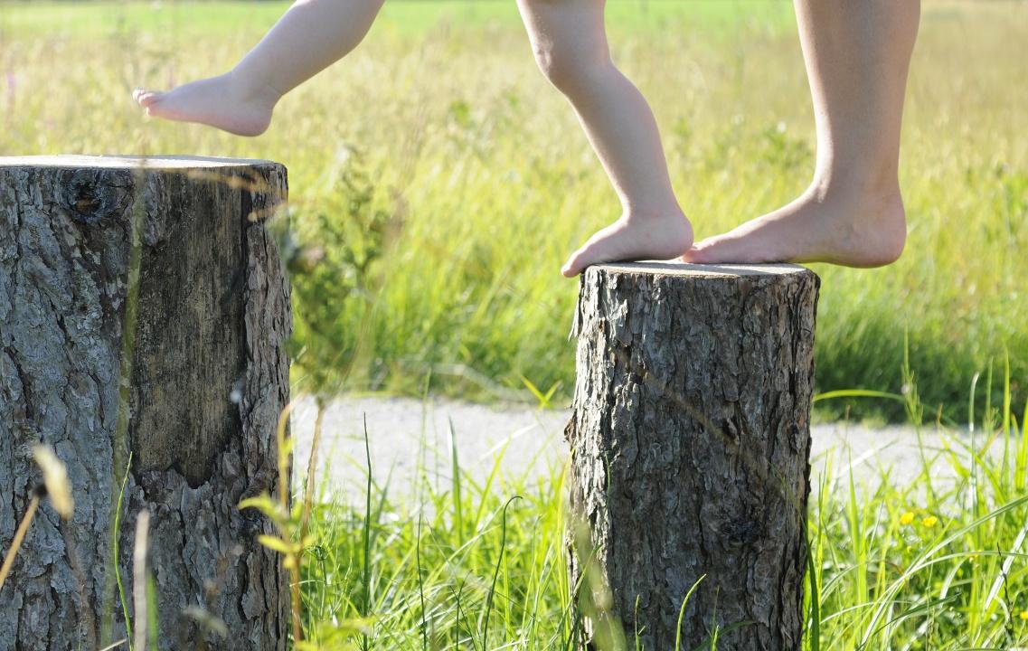 Schritt für Schritt von Baum zu Baum (Andreas Klausmann)