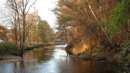 Herbst an der Zschopau in Erdmannsdorf