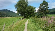 Niedersfeld-Trail, Start und Ziel in Winterberg-Niederfeld
