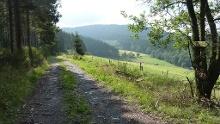 Siedlinghausen-Trail, Start und Ziel in Winterberg-Siedlinghausen