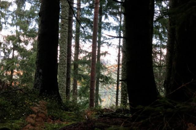 Adventure Finnenbahn Seewald Besenfeld