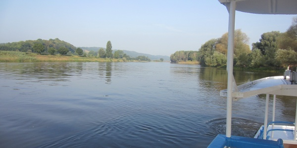 Elbe bei Coswig (Aug. 2015)