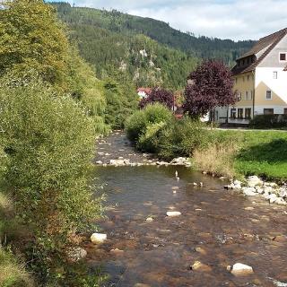Blick ins Tal bei Schönmünzach (2)