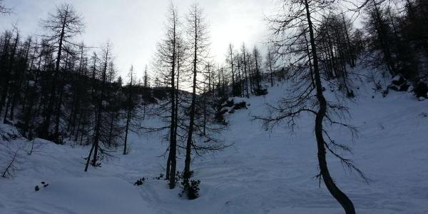Skitour zur Watzmann gugl