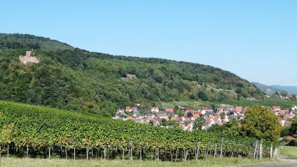 Blick au Ruine Landeck mit Klingenmünster