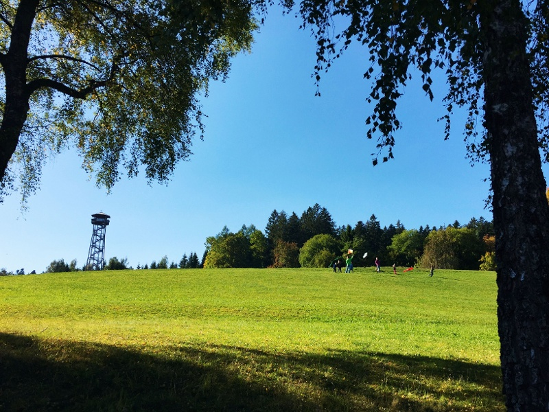 Freudenstadt: Tannen, Türme und Zauberland